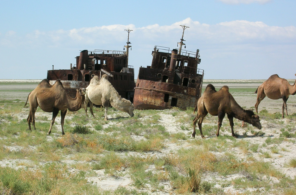 На фото: The Aral Sea Mysteries, автор: Komissarov